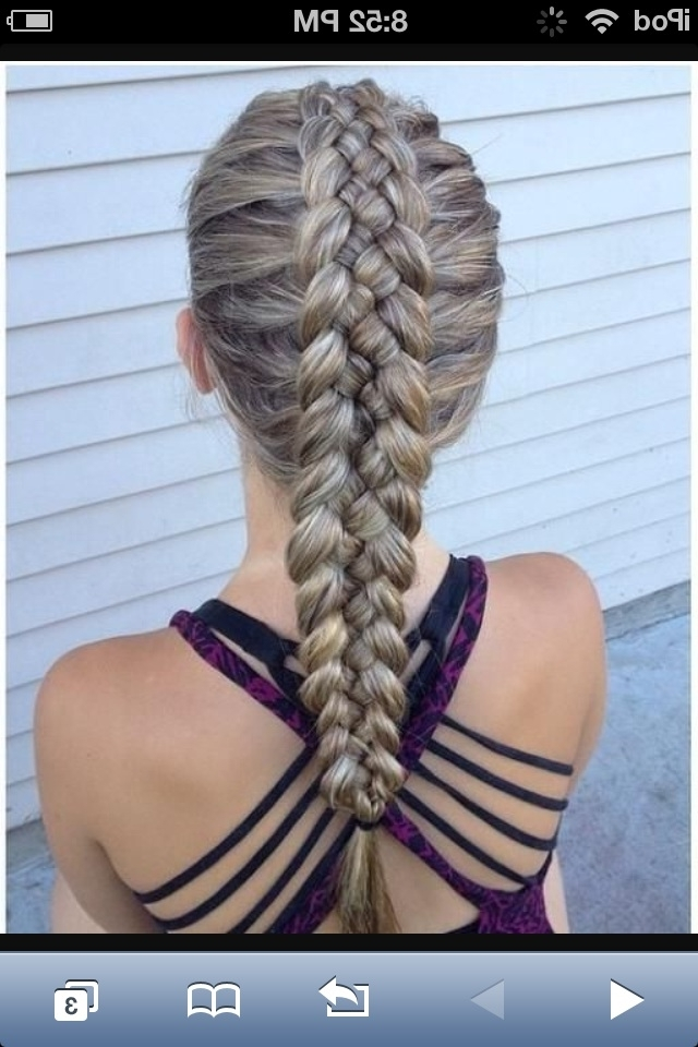 How To Make A Dutch Braid (With Pictures) – Wikihow With Most Recent Two Braids Into One (View 7 of 15)