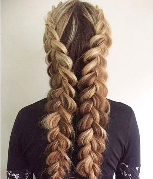 How To Master The Double Dutch Braid, Plus Inspirational Styles To Try Throughout Latest Chunky Two French Braid Hairstyles (View 8 of 15)