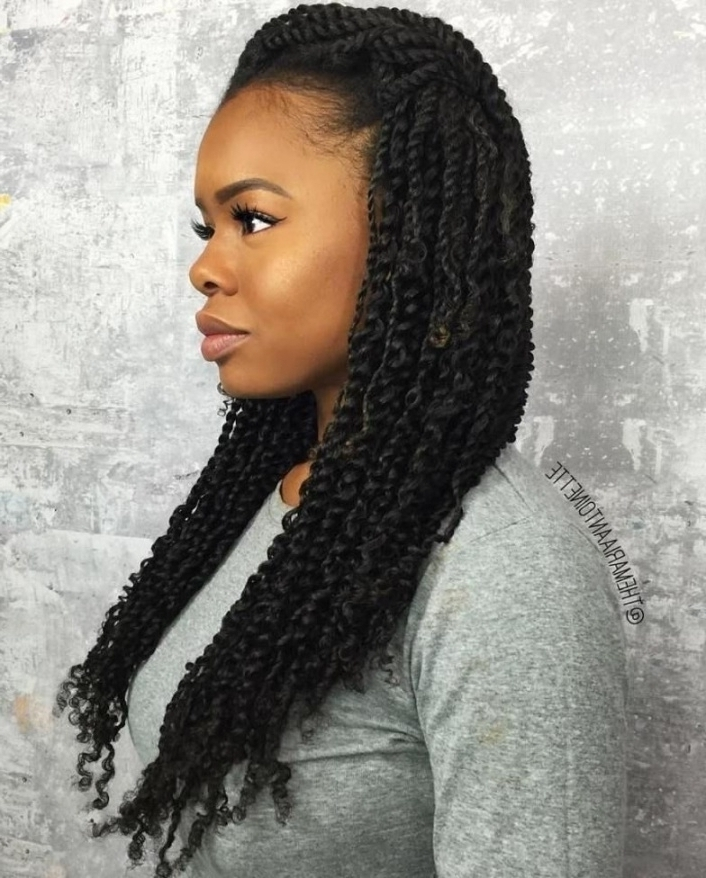 Kinky Braids Hairstyles Pictures Kinky Braids Hairstyles In Nigeria Inside Best And Newest Kinky Braid Hairstyles (View 14 of 15)