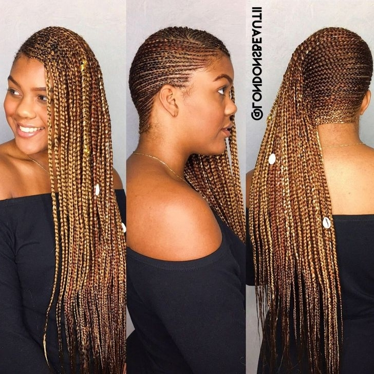 Lemonade Braids Hairstyles Extraordinary – Yupinitos Throughout Most Recently Lemonade Braided Hairstyles (View 11 of 15)