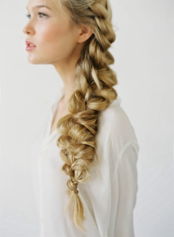Featured Photo of Braided Glam Hairstyles