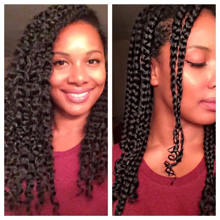 Naturally Curly Hair With Extra Sombre Hair Ideas – Jerseychinalimited Intended For Most Up To Date Braided Hairstyles For Naturally Curly Hair (View 14 of 15)
