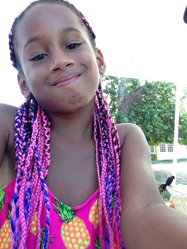 Pink And Blue Mixed Box Braids (View 13 of 15)