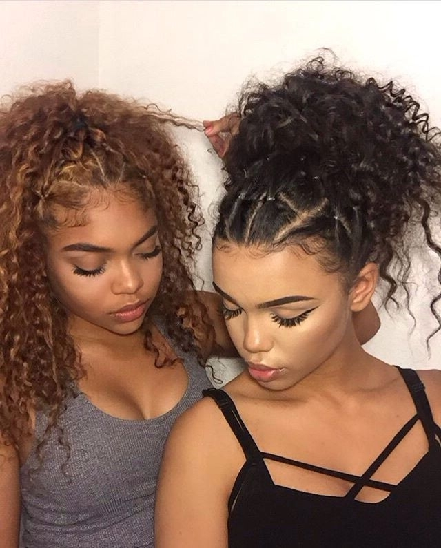 Featured Photo of Braided Hairstyles For Naturally Curly Hair