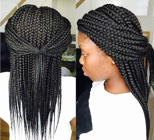 Profusion Hair (@profusionhair) Instagram Profile – Instahu In Most Up To Date Geometric Tribal Fulani Pattern Braids With Curly Wisps (View 2 of 15)