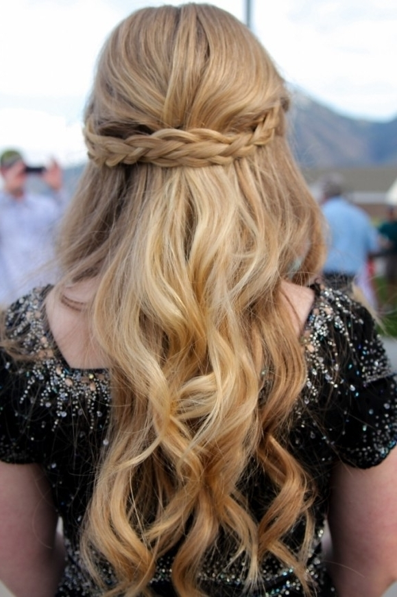 Prom Hair Down With Braid Hairstyle Images Half Up Half Down Prom With Regard To Recent Braided Hairstyles With Hair Down (View 11 of 15)