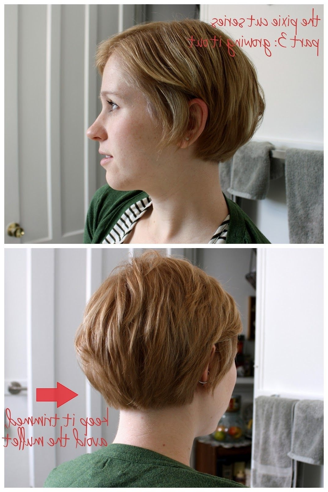 Short Bob Hairstyles Back View | Unspeakable Visions: The Pixie Cut Within Recent Pixie Wedge Haircuts (View 13 of 15)