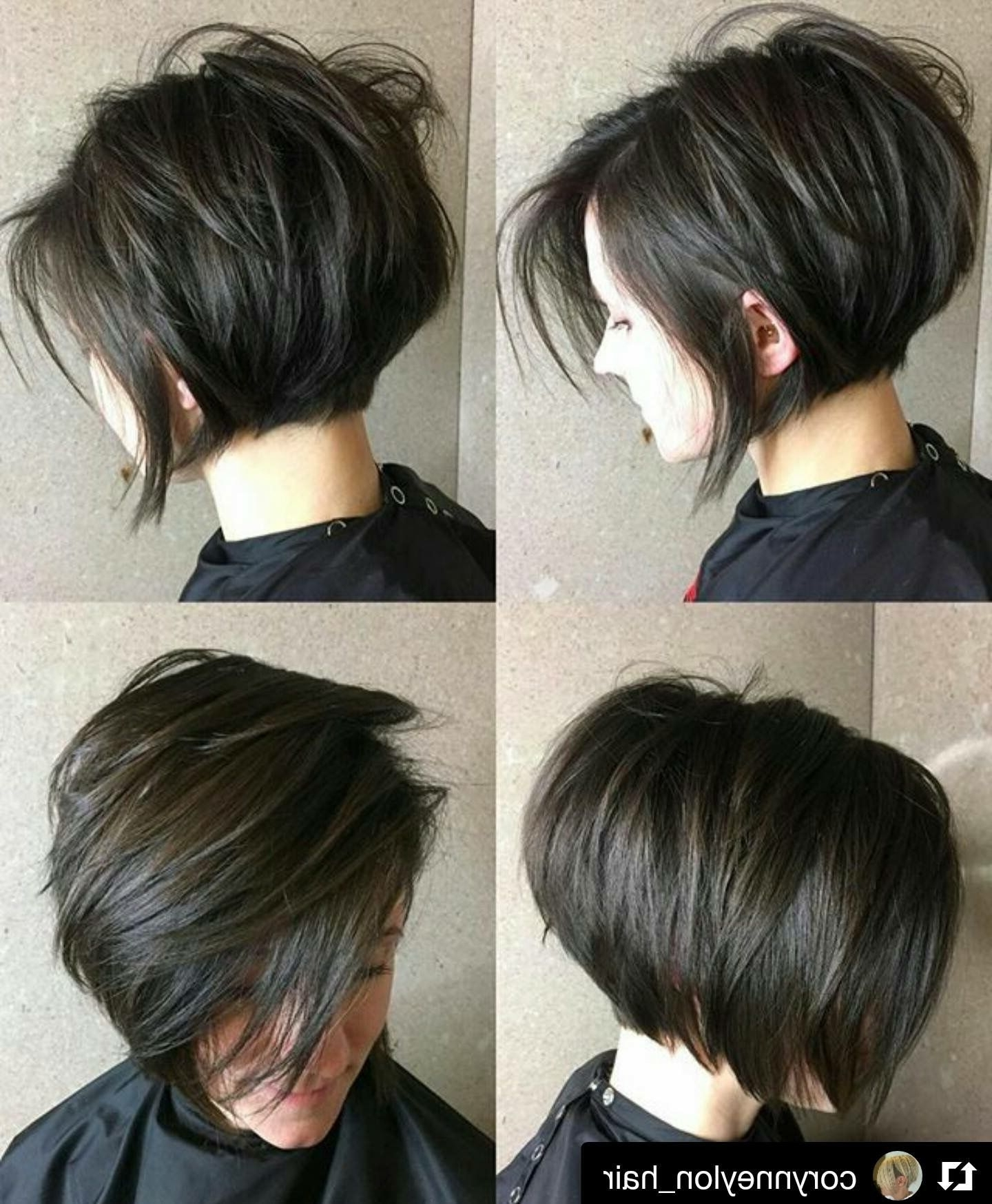 Short N Cute | Short Hair | Pinterest | Hair Style, Short Hair And Intended For 2018 Pixie Bob Haircuts (View 7 of 15)