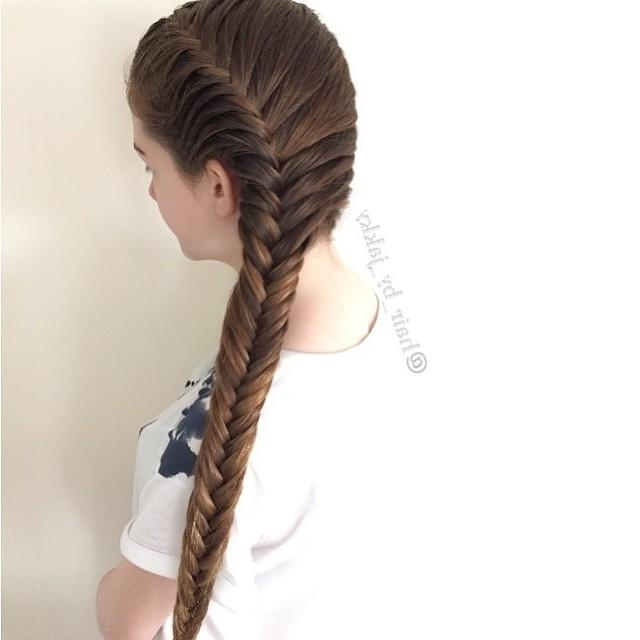 Side French Fishtail Braid Regarding Most Recently Two French Braids And Side Fishtail (View 4 of 15)