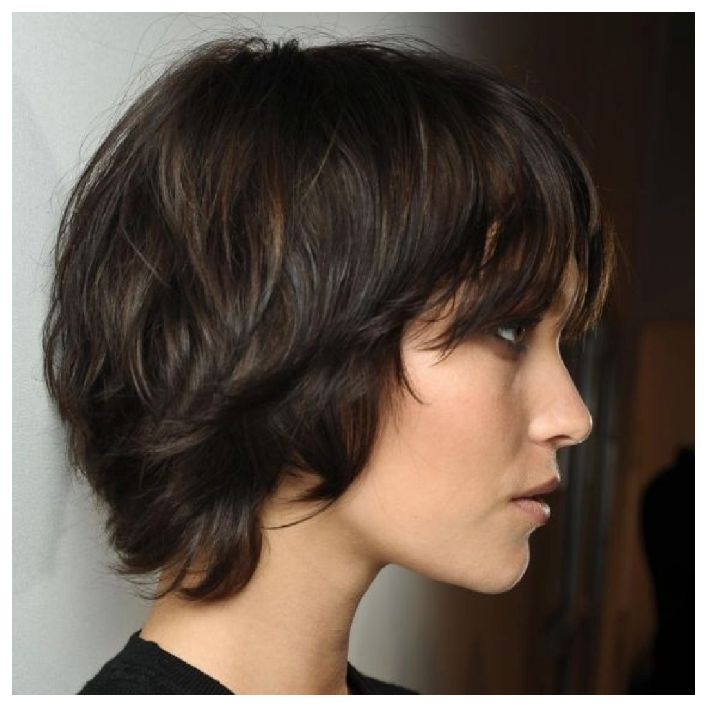 Stylenoted | Great Hair Cuts: Long Disheveled Pixie Intended For Newest Brunette Pixie With Feathered Layers (View 3 of 15)