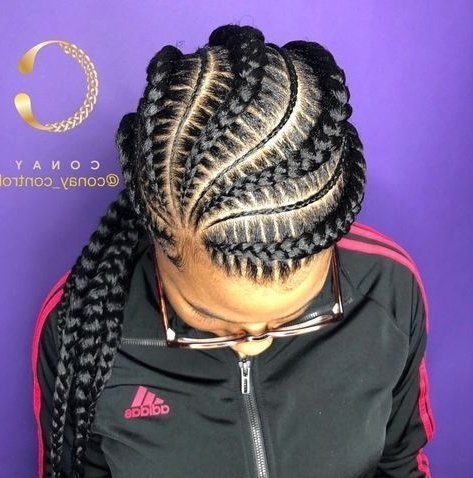 Thick And Thin Asymmetrical Feed In Braids | Summer Hair Braids Regarding Most Popular Thick And Thin Asymmetrical Feed In Braids (View 1 of 15)
