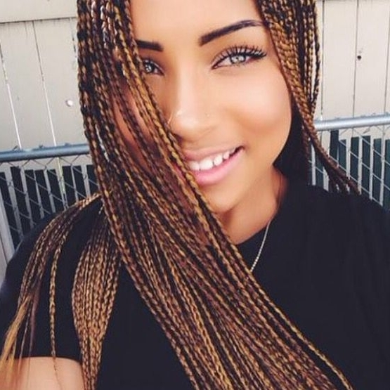 Thin Braids | Natural Hair Style Braids | Pinterest | Hair Style Throughout Latest Thin Black Box Braids With Burgundy Highlights (View 2 of 15)
