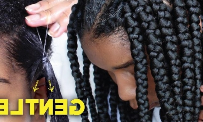 This Quick Jumbo Box Braids Rubber Band Method Will Leave You With Regard To Current Braid Hairstyles With Rubber Bands (View 12 of 15)