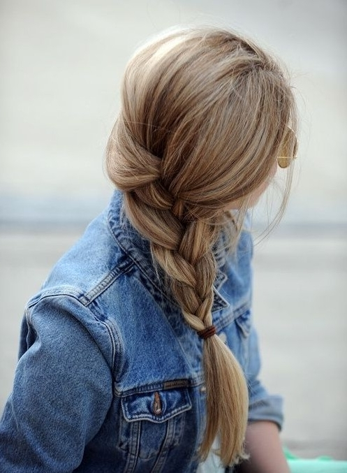 Trendy French Braid Hairstyles For 2014 – Pretty Designs Throughout Best And Newest Low Side French Braid Hairstyles (View 5 of 15)