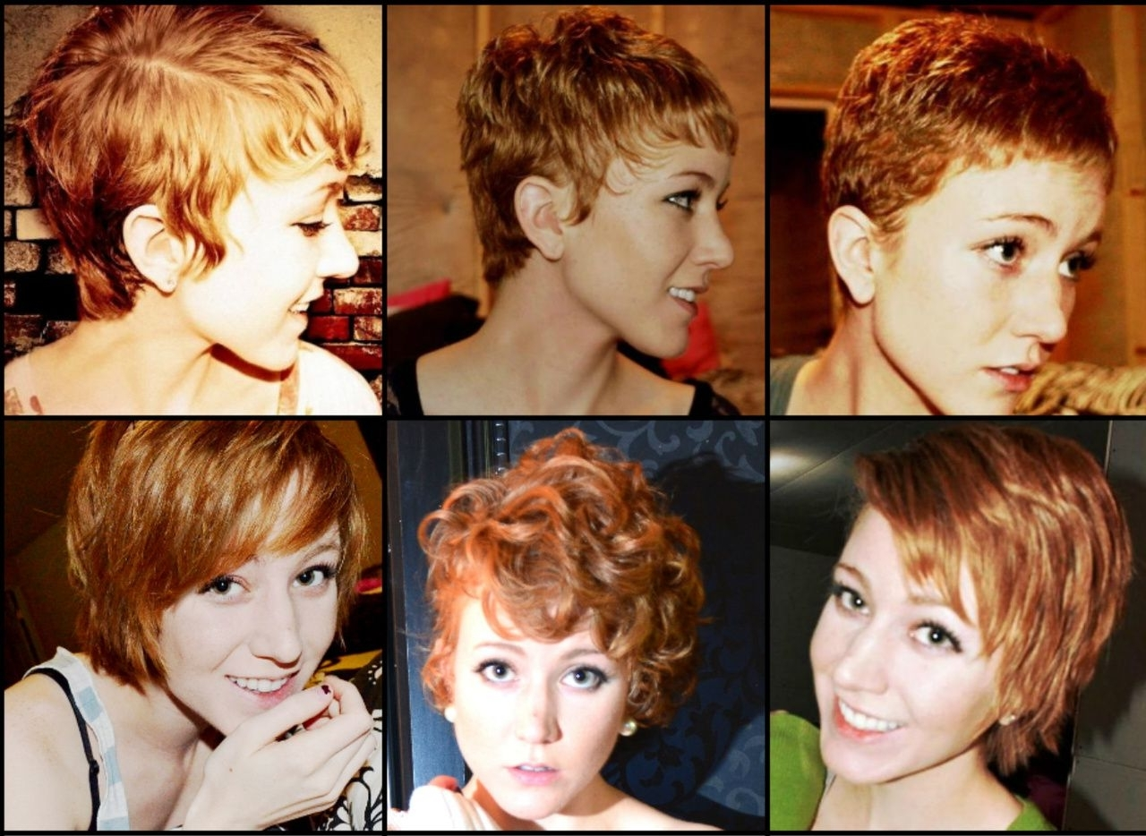 Top 15 Of Growing Out Pixie Haircuts For Curly Hair