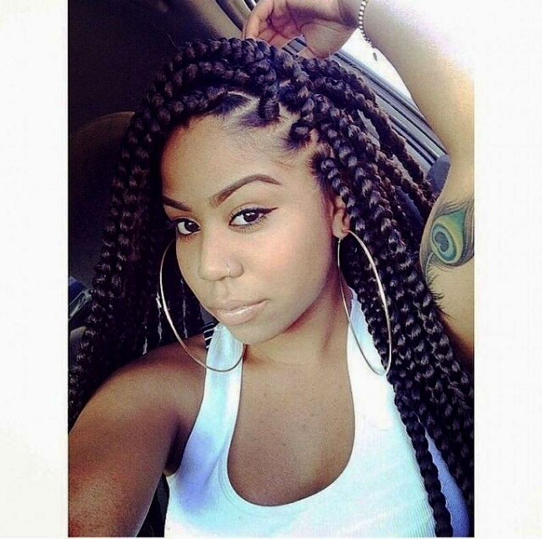 Twist Braids Hairstyles Pinterest Archives – Hairstyles And Haircuts For Most Up To Date Twist Braided Hairstyles (View 13 of 15)