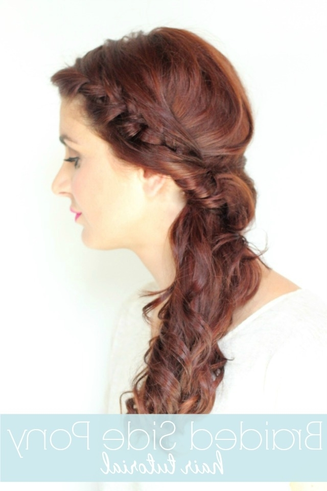 Twisted Side Braid Tutorial – Ma Nouvelle Mode With Regard To Most Recently Side Ponytail Braids With A Twist (View 6 of 15)
