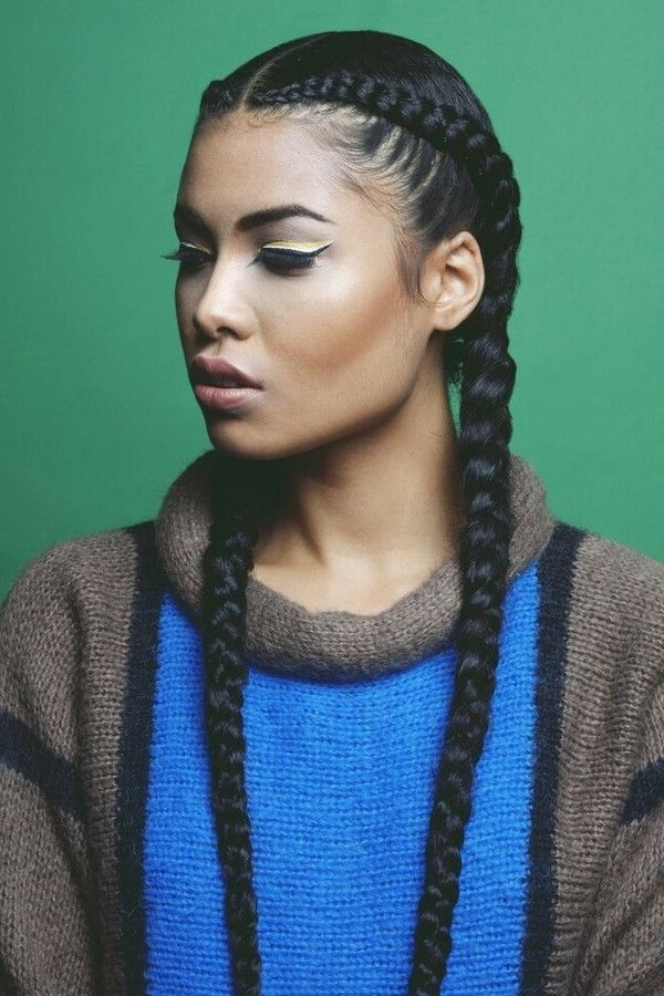 Two Braids Hairstyles   African American Hairstyling Inside Current Braided Hairstyles With Two Braids (View 9 of 15)