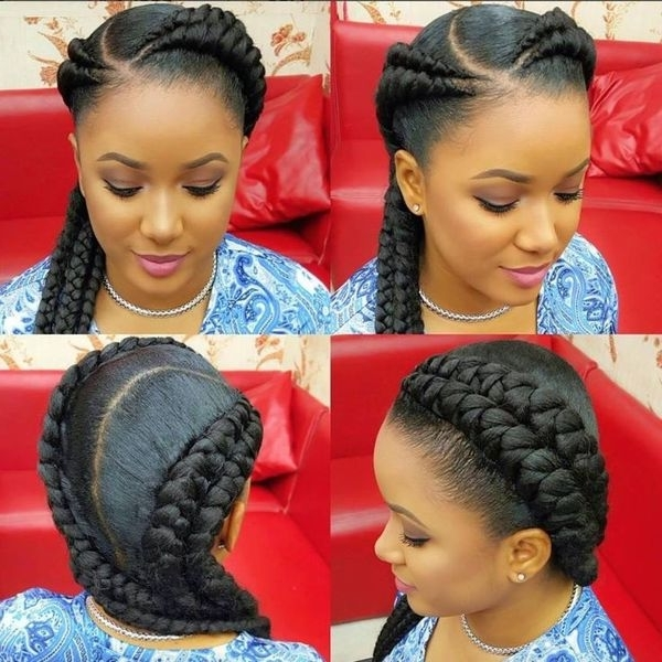 Two Braids Hairstyles   African American Hairstyling Throughout Most Current Braided Hairstyles With Two Braids (View 8 of 15)