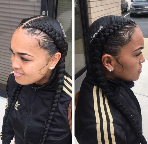 Two Braids Hairstyles   African American Hairstyling Throughout Most Popular Braided Hairstyles With Two Braids (View 15 of 15)