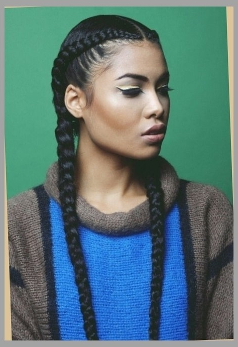 Two Long Cornrows – Super Quick Protective Style | With Regard To Most Popular Two Cornrow Boxer Braids (View 10 of 15)