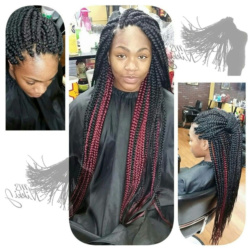 Two Toned Box Braids | Protective Hairstyles | Pinterest For Most Up To Date Two Toned Fulani Braids In A Top Bun (View 15 of 15)
