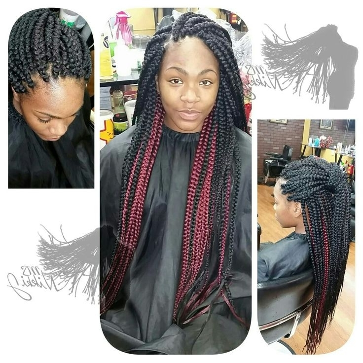 Two Toned Box Braids | Protective Hairstyles | Pinterest Within Newest Thin Black Box Braids With Burgundy Highlights (View 11 of 15)