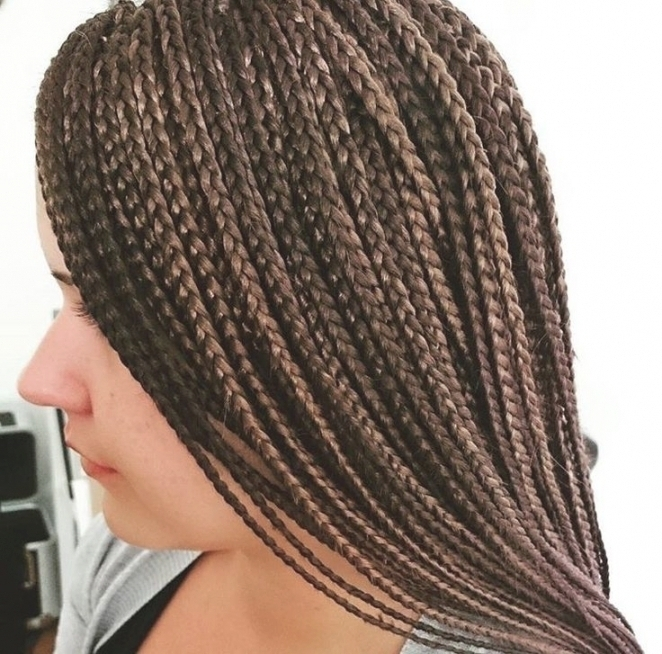 White Girl Hairstyles Braid Styles For White Hair Awesome In Most Popular Braided Hairstyles For White Hair (View 15 of 15)