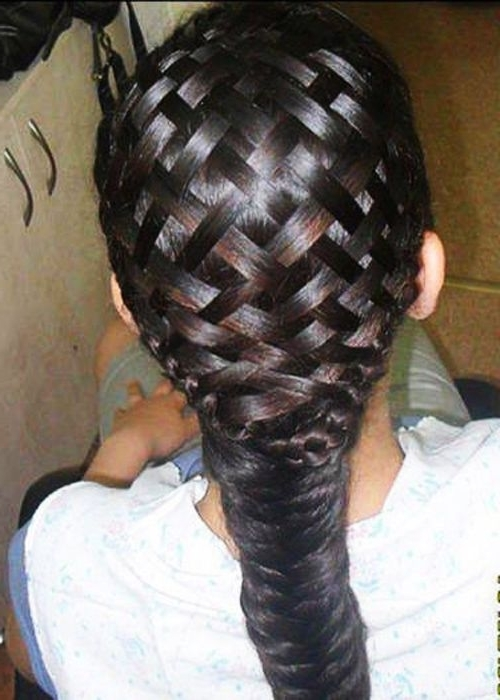 White Hair Braiding Styles | Delicate Black Hair Braid Style Idea For Most Popular Braided Hairstyles For White Hair (View 10 of 15)