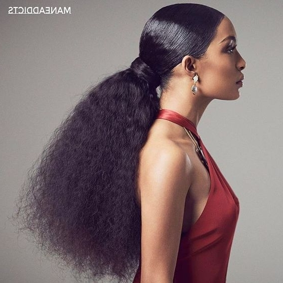 10+ Gorgeous Natural Hair Ponytail Styles To Try! – The Blessed Queens Pertaining To Pony Hairstyles For Natural Hair (View 7 of 25)