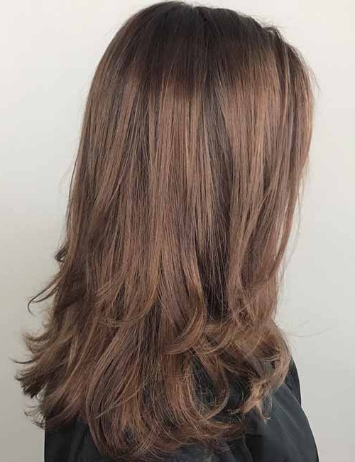 10 Highlights And Lowlights Styling Ideas For Light Brown Hair With Regard To Maple Bronde Hairstyles With Highlights (View 2 of 25)