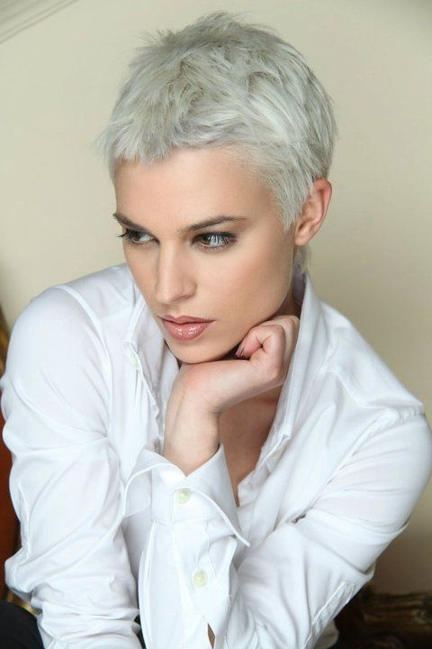 10 Striking Short Silver Hair To Make You Look Young Pertaining To Short Silver Crop Blonde Hairstyles (View 18 of 25)