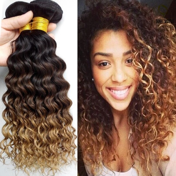 12 Stunningly Wild Dark And Curly Ombre Hair Colors Within Brown To Blonde Ombre Curls Hairstyles (View 16 of 25)