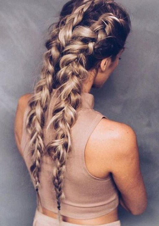 17 Chic Double Braided Hairstyles | Gorgeous Hair | Pinterest Pertaining To Double Braided Hairstyles (View 6 of 25)