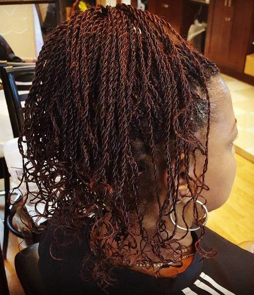 19 Amazing Twisted Braid Hairstyle Ideas: African American Women Hair Within Chic High Ponytail Hairstyles With A Twist (View 8 of 25)