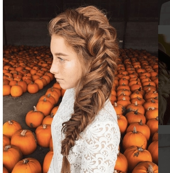 19 Fabulous Fishtail Hairstyle Ideas To Try In 2018 And Beyond In Wispy Fishtail Hairstyles (View 24 of 25)