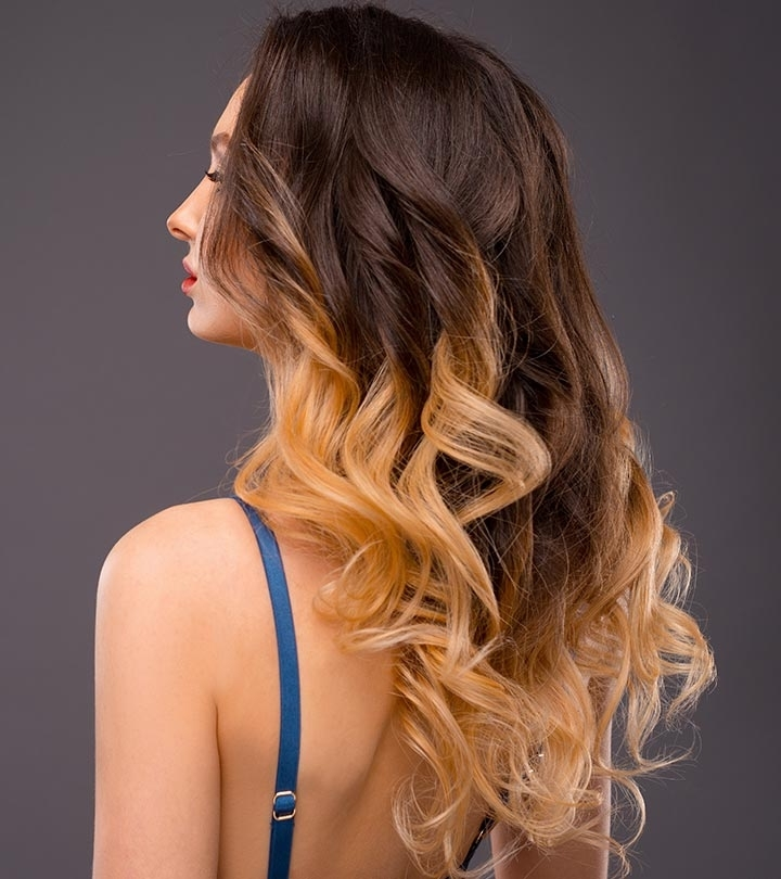 20 Amazing Brown To Blonde Hair Color Ideas Regarding Brown Blonde Layers Hairstyles (View 5 of 25)