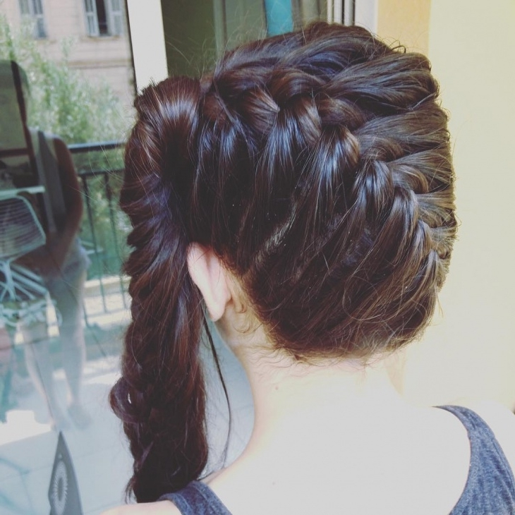 20+ French Braid Ponytail Haircut Ideas, Designs   Hairstyles Inside Reverse French Braid Ponytail Hairstyles (View 5 of 25)