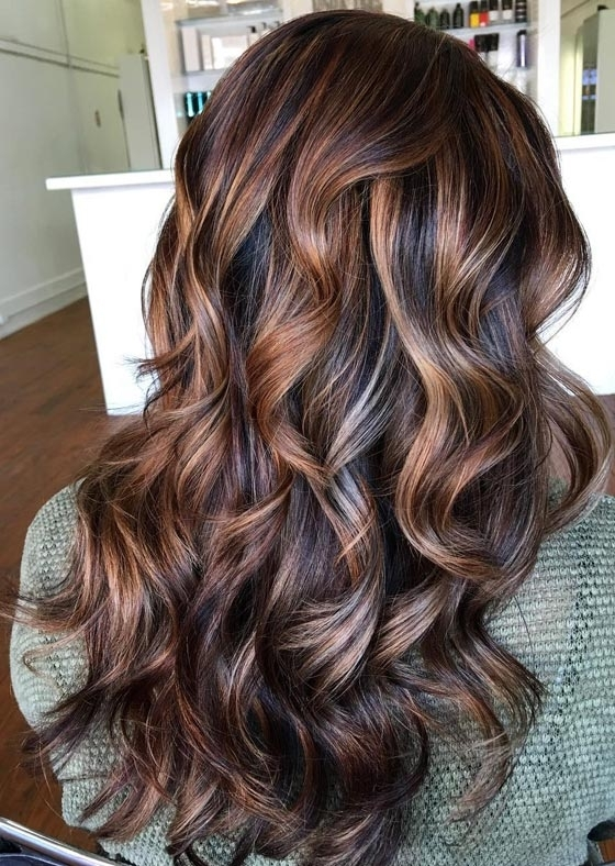 20 Magical Mahogany Hair Color Ideas With Tortoiseshell Curls Blonde Hairstyles (View 17 of 25)