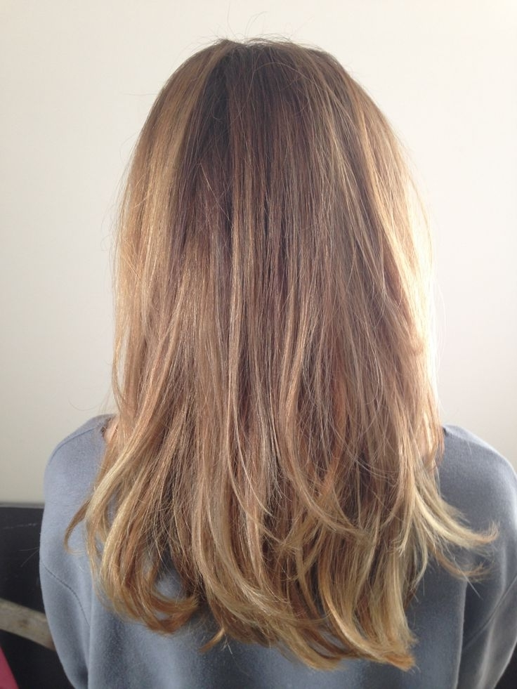 Featured Photo of Tortoiseshell Straight Blonde Hairstyles