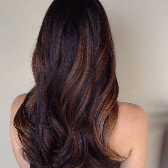 25 Best Hairstyle Ideas For Brown Hair With Highlights – Belletag Pertaining To Maple Bronde Hairstyles With Highlights (View 3 of 25)
