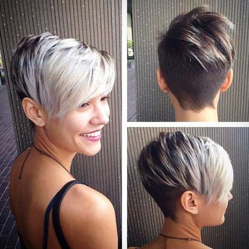 Featured Photo of Silver And Brown Pixie Hairstyles