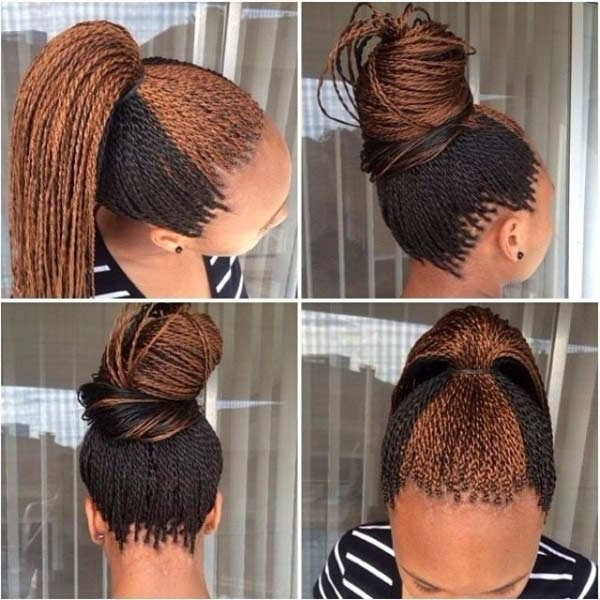 25 Dominant Micro Braids For Your Absolute Perfect Look With Regard To Micro Braid Ponytail Hairstyles (View 16 of 25)