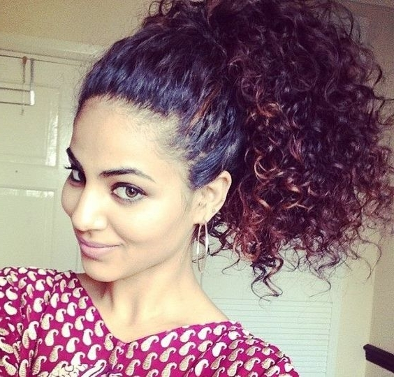 25 Hot High Ponytail Hairstyles 2018 | Hairstyle Guru Throughout Highlighted Afro Curls Ponytail Hairstyles (View 12 of 25)