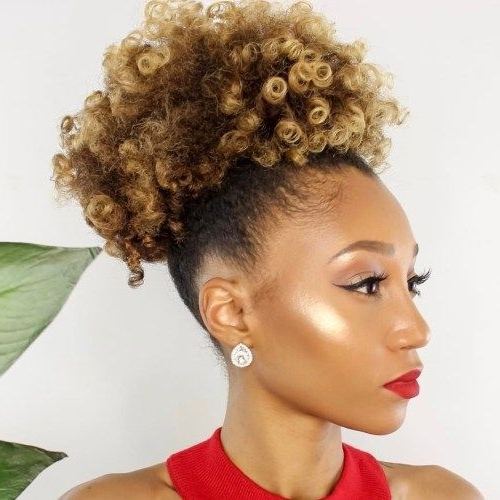Featured Photo of Highlighted Afro Curls Ponytail Hairstyles