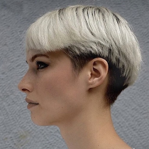 30 Most Hottest Platinum Blonde Hair Shades Ideas – Haircuts Pertaining To White Blonde Hairstyles With Dark Undercut (View 10 of 25)