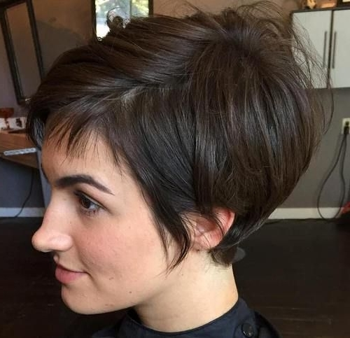 35 Trendiest Short Brown Hairstyles And Haircuts To Try   Hair Throughout Most Up To Date Reddish Brown Layered Pixie Bob Hairstyles (View 5 of 25)