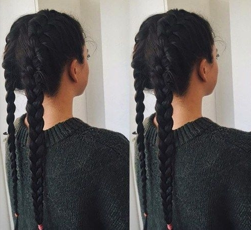 35 Two French Braids Hairstyles To Double Your Style Inside Two Braids In One Hairstyles (View 15 of 25)
