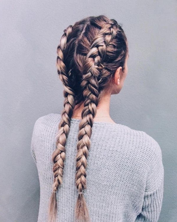 40 Adorable Braided Hairstyles You Will Love | Hair & Beauty That I With Regard To Two Braids In One Hairstyles (View 16 of 25)