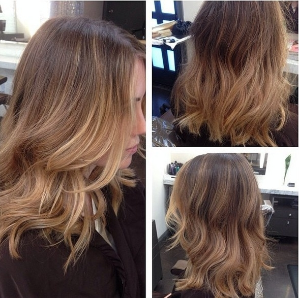 40 Latest Hottest Hair Colour Ideas For Women – Hair Color Trends 2018 Pertaining To Brown And Dark Blonde Layers Hairstyles (View 11 of 25)